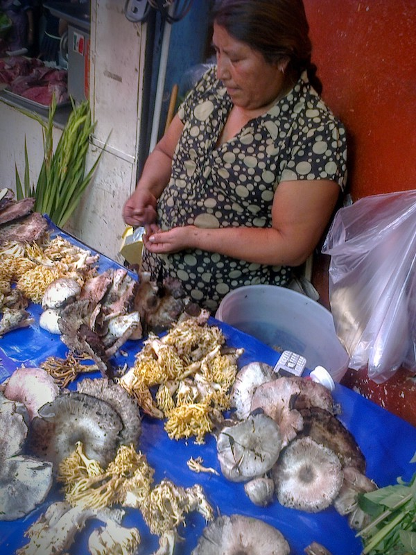 mexican woman selling mushrooms at market in Taxco